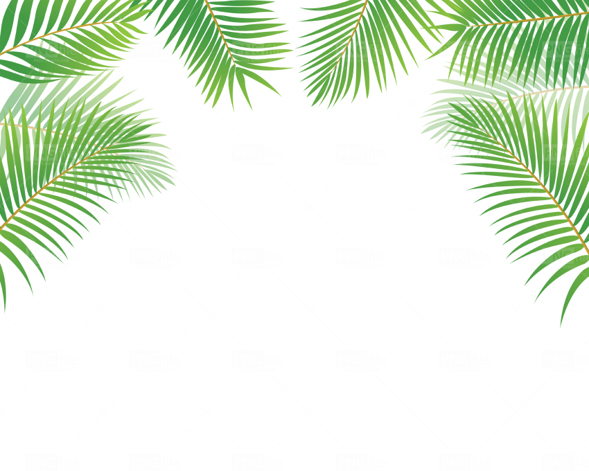 Tags Tropical Leaves Pngfile Net Free Png Images Download File formats include gif, jpg, pdf, and png. tags tropical leaves pngfile net